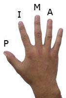 Присвоим буквы пальцам для удобства