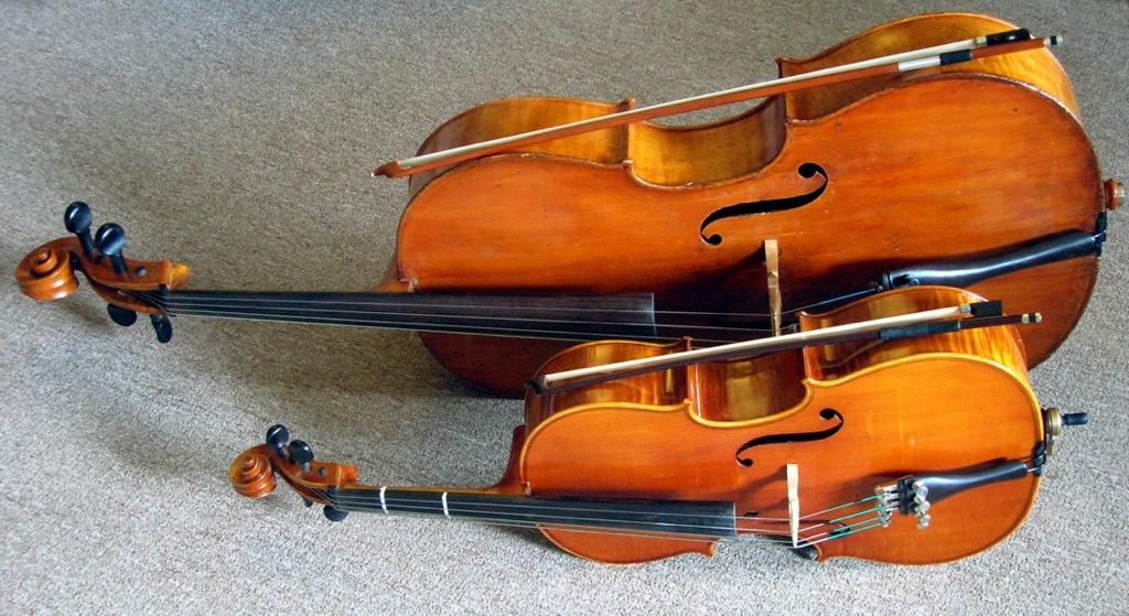 виолончель вид сбоку
