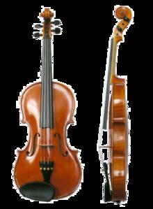 скрипка вид сбоку и спереди