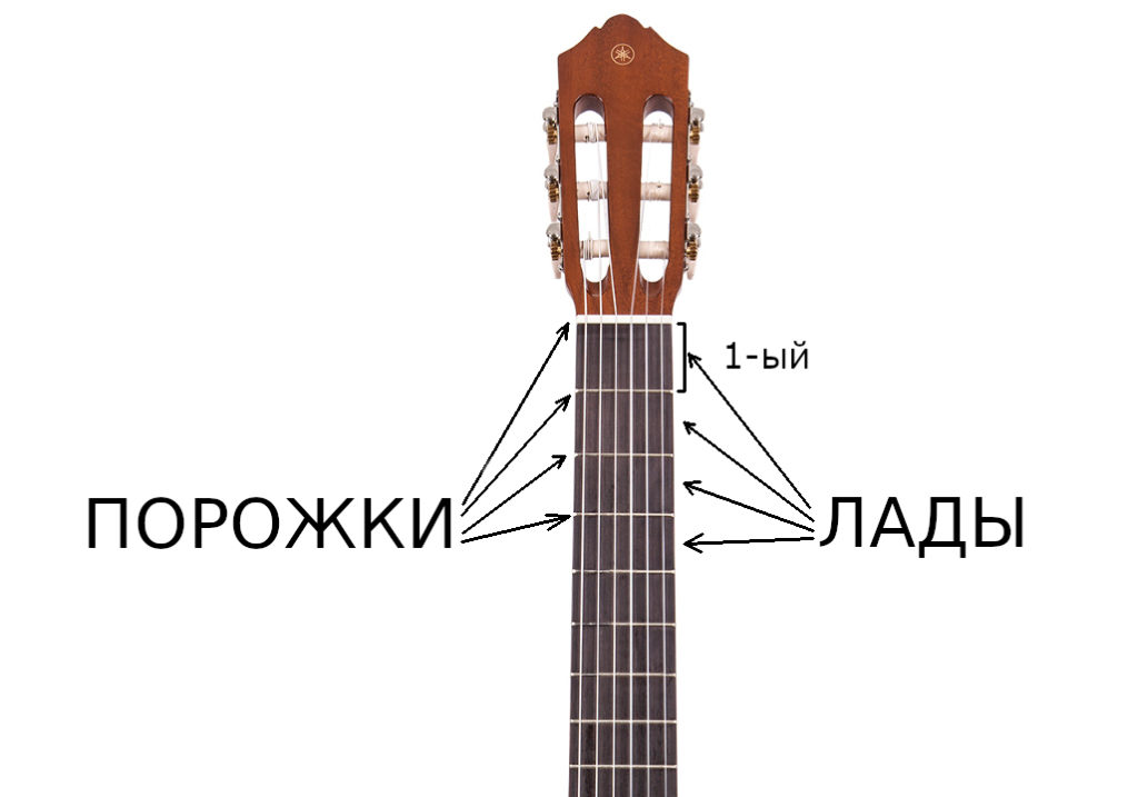лады и порожки гитары